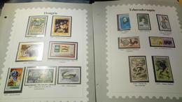D335 LOT FEUILLES TIMBRES MONDE NEUFS / OB A TRIER BELLE COTE DÉPART 10€ - Collections (en Albums)