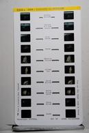 LESTRADE :   1803 E   JURA  :  CASCADES DU HERISSON - Visionneuses Stéréoscopiques