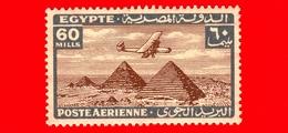 Nuovo - MNH - EGITTO - 1933 - Aereo Che Vola Sopra Le Piramidi Di Giza - 60 P. Aerea - Luchtpost