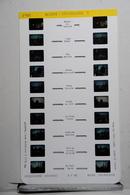 LESTRADE :   1901   ALSACE  :  STRASBOURG  1 - Visionneuses Stéréoscopiques