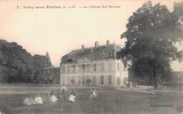91 7 SOISY SOUS ETIOLLES Le Château Des Donjons - France