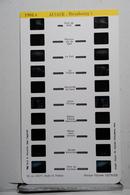 LESTRADE :   1901 E    ALSACE  :  STRASBOURG  5 - Visionneuses Stéréoscopiques