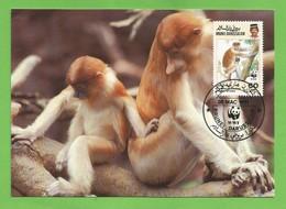 Brunei Darussalam 1991 , Proboscis Monkey / Der Nasenaffe - WWF Official Maximum Card - First Day 30 MAC 1991 - Brunei (1984-...)