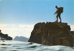 382/FG/19 - ALPINISMO - GRUPPO DEL PARADISO (AOSTA): Colle Di Chamonin - Italia