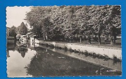51 - SAINTE-MENEHOULD - L'AISNE AU JARDIN - CPSM DENTELÉE - Sainte-Menehould