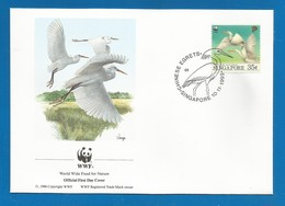 Singapore 1993 , Chinese Egret / China-Seidenreiher - WWF Official First Day Cover 10.11.1993 - Singapour (1959-...)
