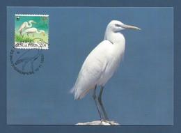 Singapore 1993 , Chinese Egret / China-Seidenreiher - WWF Official Maximum Card 10.11.1993 - Singapour (1959-...)