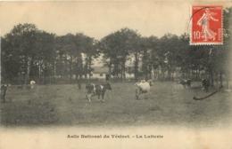LE VESINET ASILE NATIONAL LA LAITERIE - Le Vésinet