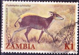 Sambia Zambia - Gelbrückendrucker (Cephalophus Sylvicultor) (Mi.Nr.: 297) 1983 - Gest Used Obl - Zambia (1965-...)