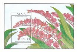 Nevis Hb 32 - St.Kitts Y Nevis ( 1983-...)