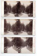 AK-0402/ Kalserthörl-Haus In Tirol Berghütte Stereofoto V Alois Beer ~1895   - Photos Stéréoscopiques