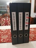 COLLECTION TIMBRES NOUVELLES MNH DE LIECHTENSTEIN ANNÉES 1975 À 2018 COMPLETES MONTÉE DANS 2 ARCHIVERS AVEC BANDES HAWID - Sammlungen (im Alben)