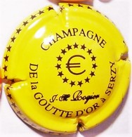 Rogier Jean-Michel N°11, Jaune & Noir - Champagne