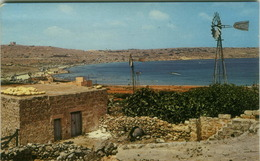 MALTA - MELLIEHA BAY - EDIT SLIEMA - 1960s (BG1919) - Malta
