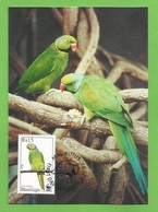 Mauritius  2003 , Mauritius Parakeet / Mauritius-Sittich - WWF Official Maximum Card - 19.03.2003 - Maurice (1968-...)