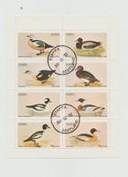 Ecosse - Staffa Scotland - Bloc De 8 Timbres Canards - Année 1972 - Regionalmarken