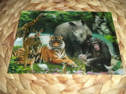 Tiere Animals Lenticular 3D Postkarte Postcard - Rhinocéros