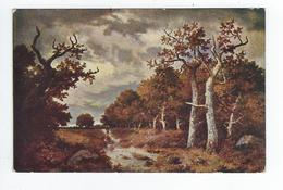 CPA Tuck Paysage - Musées