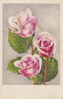 AK Rosen - 1958 (38668) - Blumen