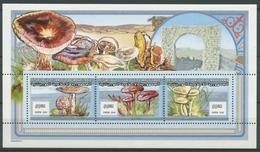 Mauretanien 2000 Pilze Trichterling Schirmling 1058/60 B K Postfrisch (C24656) - Mauritanie (1960-...)
