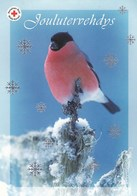 Bird - Oiseau - Vogel - Uccello - Pássaro - Pájaro - Bullfinch - Red Cross - Suomi Finland - Itella Oyj - Postage Paid - Croix-Rouge
