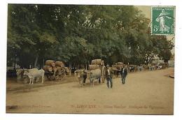 LIBOURNE - Allée Souchet - Attelages De Vignerons - Libourne