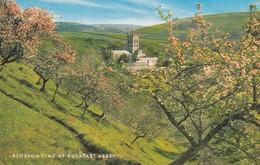 Postcard Blossom Time At Buckfast Abbey My Ref  B12799 - England