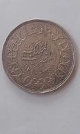 Egyptian Silver Coin - Egypte