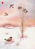 Bird - Oiseau - Vogel - Uccello - Pássaro - Pájaro - Bullfinch - Red Cross 1992 - Suomi Finland - Postage Payed - Croix-Rouge