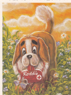 St. Bernhard Dog Reddie By Terho Peltoniemi - Red Cross Suomi Finland - Croix-Rouge