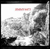 Plaque De Verre - Rochers Helenna Roc En 1898 Cap D'Antibes Juan Les Pins 06 Alpes Maritimes - Taille 43 X 45 Mlls - Plaques De Verre