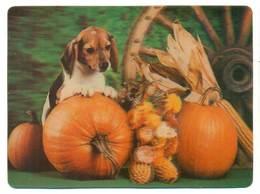Trójwymiarowa Lenticulaire 3D - Zwierzęta Pies Dog - Cani