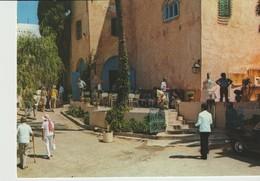 CP - PHOTO - SIDI BOU SAID - CAFÉ SIDI AZIZI - CARTHAGE - 13 - ANIMÉE - Túnez