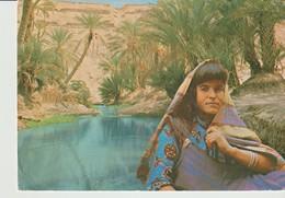 CP - PHOTO - OASIS TUNISIENNE - CARTHAGE - - Túnez