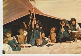 CP - PHOTO - RÉPUBLIQUE ISLAMIQUE DE MAURITANIE - SCÈNE DE VIE SOUS LA TENTE - 4436 - IRIS - Mauritania