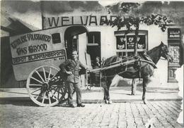 Blankenberge : Katholieke Volksbakkerij  ONS BROOD  ( Welvaart )    13 X 10 Cm  (  Zie Detail ) - Lieux