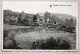 SILENRIEUX Route De WALCOURT / Ed. A. Masset Lesoil, Négociant / Cerfontaine - Cerfontaine