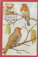 Carte Maximum - Oiseaux - Rouge-gorge - Allemagne 1957 - Moineaux