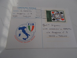 B710   Cartolina Postale Federazione Italiana Bridge - Playing Cards