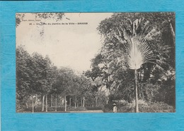 Cambodge. - Un Coin Du Jardin De La Ville. - Saïgon. - Cambodia