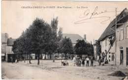 CHATEAUNEUF LA FORET LA PLACE TBE - Chateauneuf La Foret