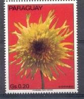 Fleur - Paraguay - Paraguay