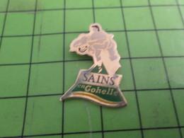 410a Pin's Pins / Rare & De Belle Qualité : THEME VILLES / SAINS EN GOHELLE - Cities