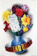 @@@ MAGNET - Holland Bulbs - Publicitaires