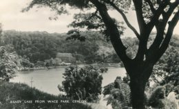 SRI-LANKA (Ceylon) -  RPPC Kandy Lake From Wace Park - Sri Lanka (Ceylon)