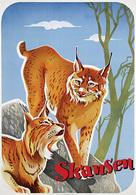 @@@ MAGNET - Skansen (Lynx) - Publicitaires