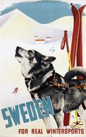@@@ MAGNET - Sweden For Real Wintersports - Publicitaires