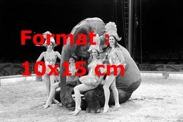 Reproduction D'une Photographie Ancienne De Quatre Danseuses De Cirque Près D'un éléphant Assis Sur La Piste - Reproductions