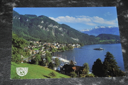 4606  VITZNAU - Suisse