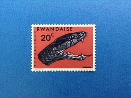 1967 RWANDA REPUBLIQUE RWANDAISE FAUNA SERPENTI MAMBA 20 C FRANCOBOLLO NUOVO STAMP NEW MNH** - 1962-69: Nuovi